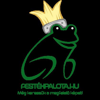 DECORA Szivárvány Beltéri Színes Falfesték Okker 5 l