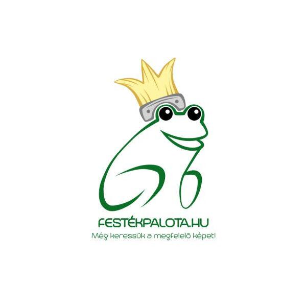 Baumit IonitColor 14 liter levegőion növelő beltéri festék